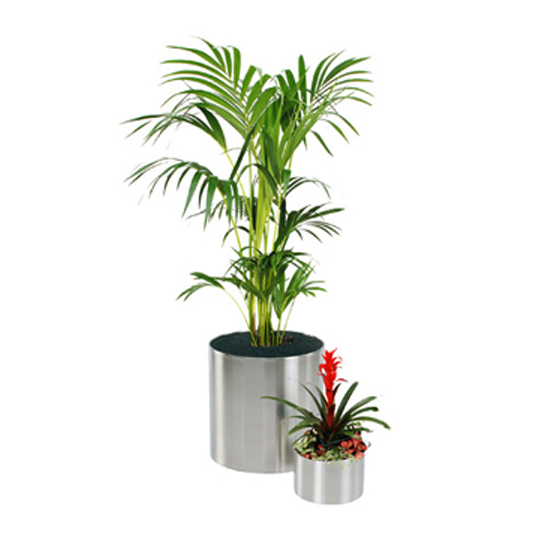 Stainless Steel Pots & Planters
